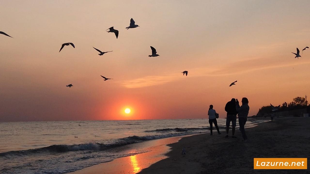 Лазурное Фото. Лазурне Херсонская область Украина. Отдых на море Лазурное 136-3