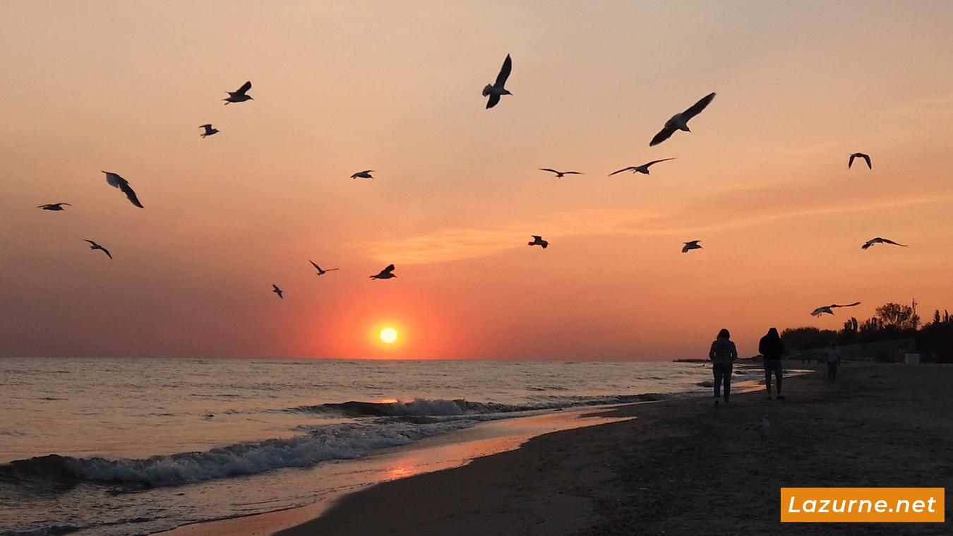 Лазурное Фото. Лазурне Херсонская область Украина. Отдых на море Лазурное 32-2